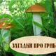 Загадки про грибы. Презентация