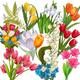 Клипарт на прозрачном фоне - Красивы первые весенние цветы