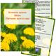 Картотека домашних заданий - Весна. Растения луга и сада