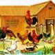 Домашние птицы. Презентация