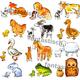 Наглядное пособие для малышей Птицы, животные и их детеныши