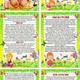 Природа и дети летом (информация для родителей)