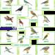 Демонстрационный материал. Перелетные птицы