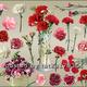 Цветочный клипарт для фотошопа - Цветы гвоздики разных сорто...