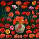 Цветочный клипарт для фотошопа - Яркие красные маки