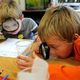 Развитие познавательных способностей у младших школьников