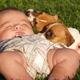 Домашние животные и новорожденный ребенок