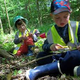 Экологические игры для дошкольников и младших школьников на ...