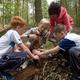 Правила поведения в лесу для детей (памятка)