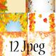 Осенние рамочки для оформления работ (сборка)