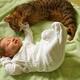 Кошка и новорожденный ребенок