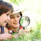 Чем занять ребенка летом? Интересные занятия для детей и под...