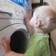Выбираем безопасную стиральную машинку