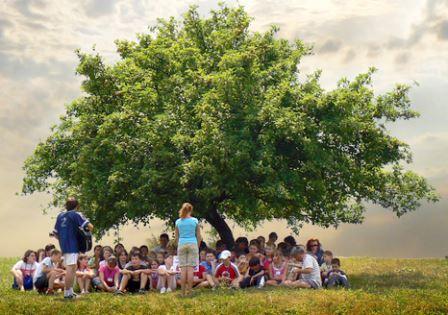 мероприятия в лагере, мероприятия для летнего лагеря, веселые игры для детей в лагере