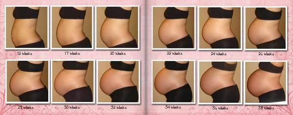Как выглядит живот на 2 месяце беременности фото
