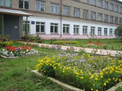 опыты на пришкольном участке, озеленение территории школы