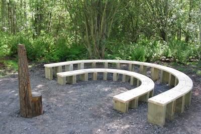 проект озеленения школьной территории, благоустройство школьного участка