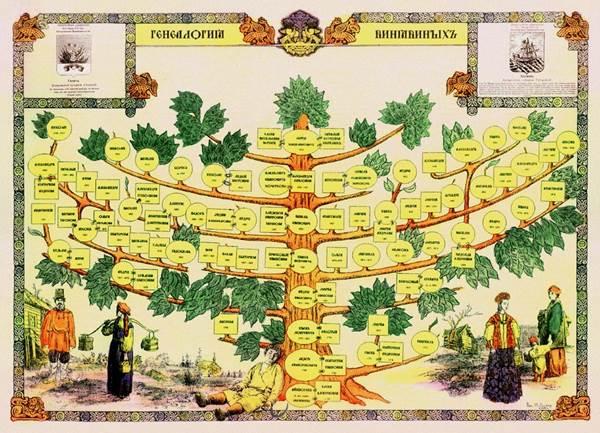 родословное древо, родословное дерево картинки