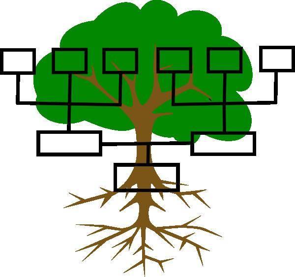родовое дерево своими руками фото