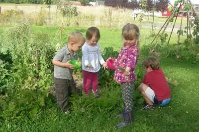 летний период в детском саду