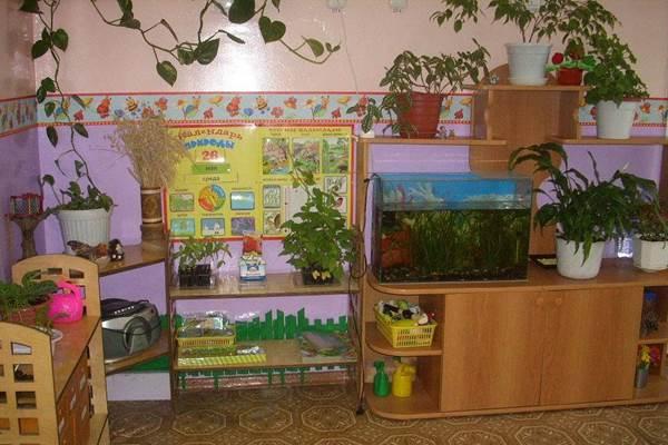 Календарь природы в средней группе детского сада картинки