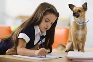 составить режим дня школьника 4 класса
